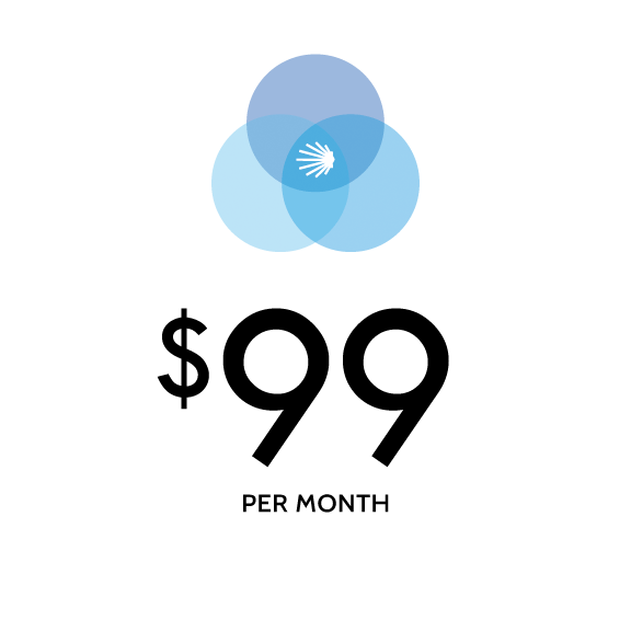 Unlimited Monthly WordPress Tasks, Base Membership » WP Cinch