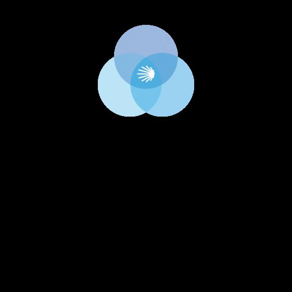 Unlimited Monthly WordPress Tasks, Plus Membership » WP Cinch